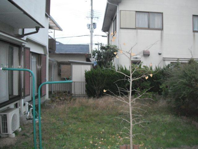DSCF1485_2011-11-19